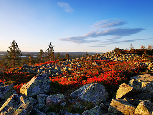 Lapland hill view with stones and autumn colors