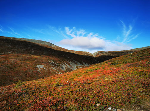 Lapland hills with autumn colors and sunny sky